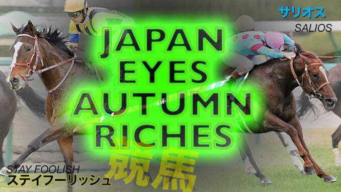 Japanese horses